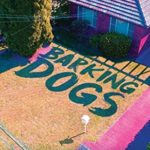 Review: Barking Dogs by Rebekah Clarkson, reviewed by Kate Lomas Glendenning