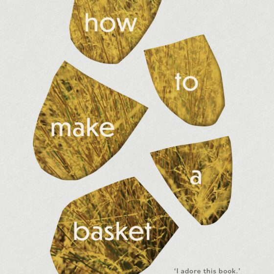 Cover of Jazz Money's poetry book titled how to make a basket.